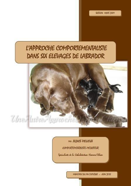 Agnès Vieljeux - another approach your dog - routes